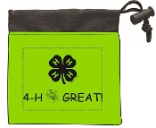 4-H First Aid Kit