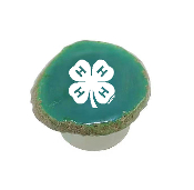 4H STONE POP SOCKET
